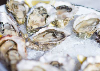 fresh raw oysters over ice